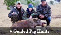 Guided Pig Hunting