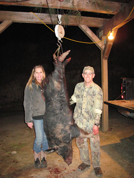 Wild Pig Hog And Boar Hunting Guided Turkey Hunts And